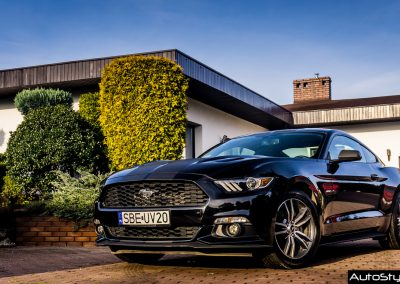 Ford Mustang Vinyl Car Wraps